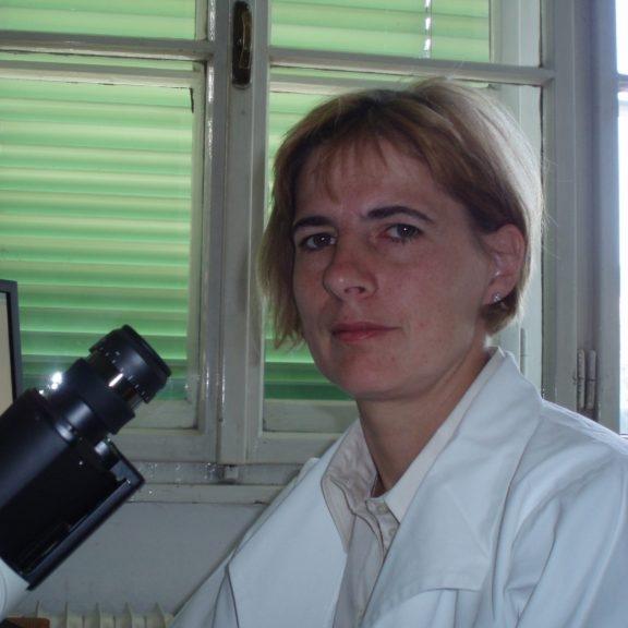 Doc. Dr. Nevenka Kregar Velikonja